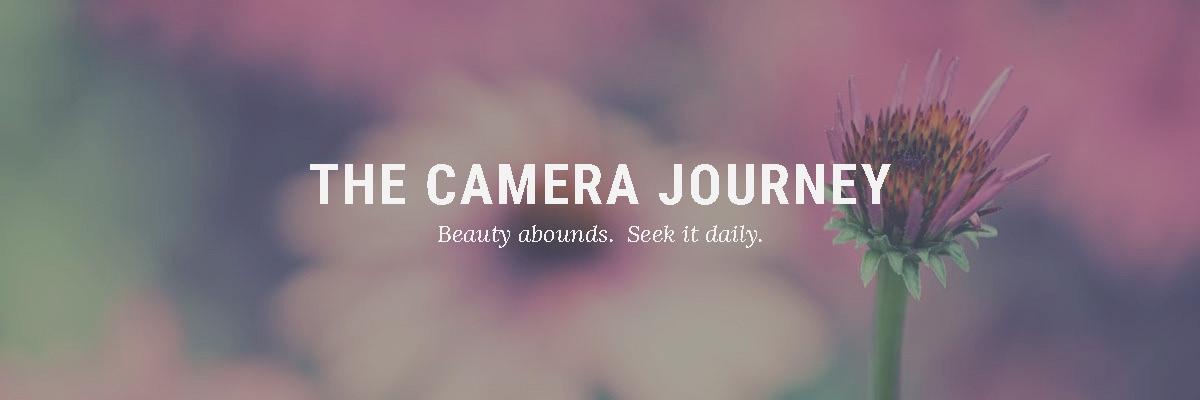 Join Elmore DeMott's Camera Journey