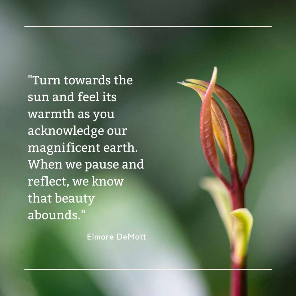 Turn towards the sun and celebrate the earth!